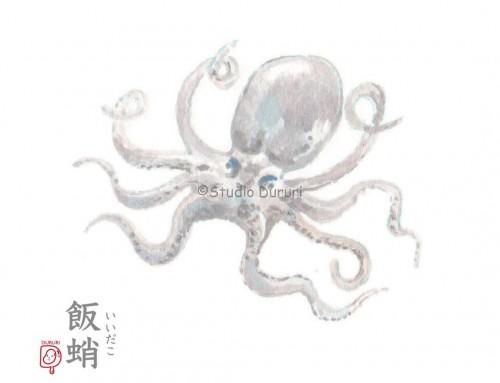 立春の旬:飯蛸