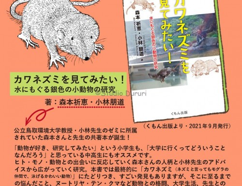 イラストを担当しました!書籍「カワネズミを見てみたい!」