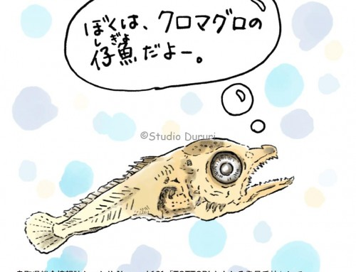 「TOTTORIおもしろ発見手帖」:鳥取県水産試験場