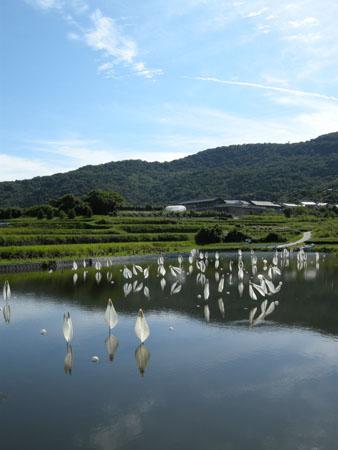 teshima-todakachiyoko.jpg